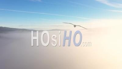 Vue Aérienne De La Brume Matinale Et Des Nuages - Vidéo Drone