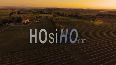 Images Aériennes Vignobles Au Coucher Du Soleil En Toscane, Italie, 4 K - Vidéo Drone