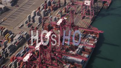Vue Rapprochée Des Oiseaux Autour De Hong Kong Et Du Déchargement D'un Grand Cargo - Vidéo Drone
