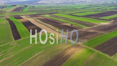 Champs De Cultures Agricoles Labourés Et Préparés Pour La Plantation - Vidéo Drone