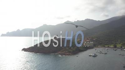 Girolata Harbour - Video Drone Footage