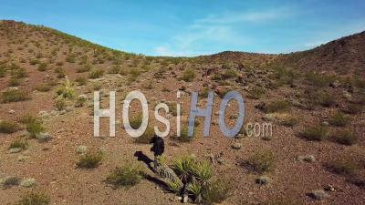 Aerial View Of A Photographer Walking With And Tripod Across A Desert With Long Shadows