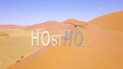 Vue Aérienne Sur Un Homme En Randonnée Dans Le Paysage Désertique Accidenté Et Les Dunes De Sable Près De Dune 45 En Namibie, Afrique - Vidéo Drone
