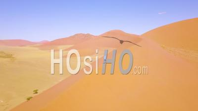 Aerial View Over A Man Hiking In The Rugged Desert Landscape And Sand Dunes Near Dune 45 In Namibia, Africa - Video Drone Footage