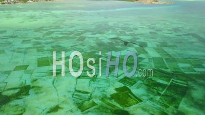 Vue Aérienne De La Ferme D'algues Aquacole Sous-Marine Près De Nusa Dua Sur L'île De Bali, Indonésie -Vidéo Drone