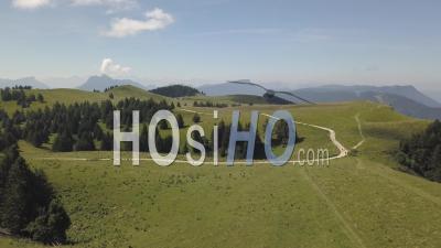 Plateau Du Semnoz En été, Randonnées, Massif Des Bauges, Savoie, France, Vidéo Drone