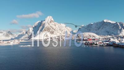Fishing Village Of Reine In The Lofoten Islands - Norway - Video Drone Footage