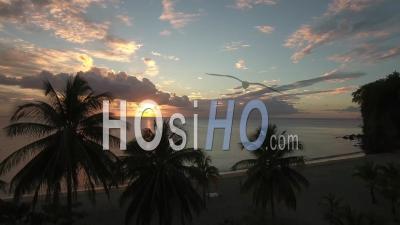 Vue Aérienne Sur La Plage Tropicale Et La Silhouette Des Palmiers Au Coucher Du Soleil - Vidéo Par Drone