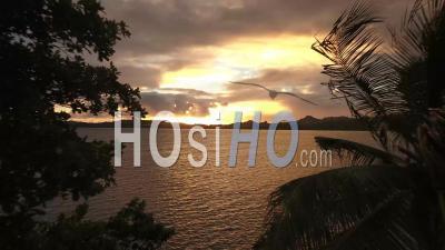 Vue Aérienne Sur L'océan Et La Silhouette Des Palmiers Au Coucher Du Soleil - Vidéo Par Drone