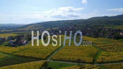 Alsacian Village Surrounded By Vineyards, Alsace, France - Video Drone Footage