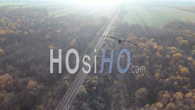 Vue Aérienne Du Passage à Niveau De La Forêt D'automne - Vidéo Drone