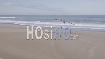 Femme Au Repos Avec Ses Deux Chevaux Sur La Plage Sauvage Au Bord De L'océan Et Des Dunes - Vidéo Aérienne Par Drone