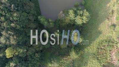 Daims Dans Le Parc Leveque à Coutances, Normandie, France - Vidéo Aérienne Par Drone