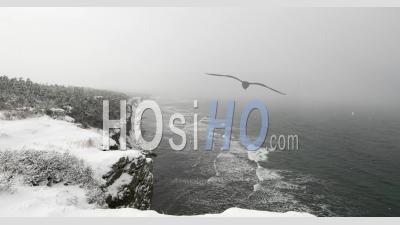 Laps De Temps D'une Tempête De Neige Venant De L'océan à La Côte