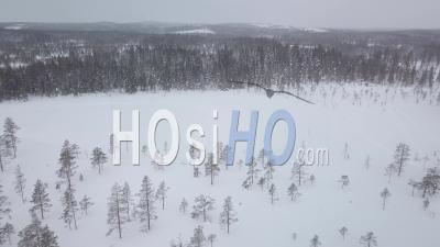 Personnes Et Motoneiges Dans Une Forêt Enneigée De Sapins, Tackasen, Suède - Vidéo Drone