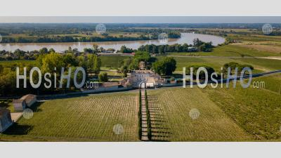 Aerial View Fronsac Vineyard Landscape, Bordeaux Vineyard - Aerial Photography - Aerial Photography