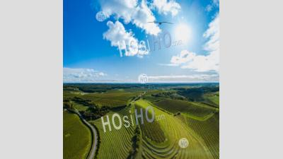 Aerial View Of Cognac Vineyard At Sunset - Aerial Photography