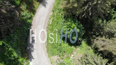 Top Shot And Tilt On A Road In A Forest In The Alps - Video Drone Footage