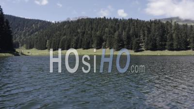 À La Découverte Des Pyrénées Derrière La Forêt De Sapins à Proximité D'un Lac - Vidéo Par Drone
