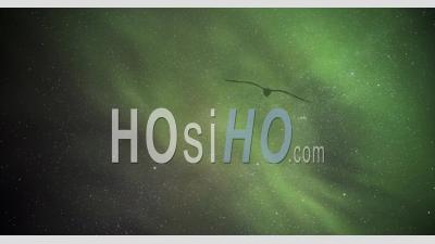 Aurora Borealis Timelapse De L'affichage De Fortes Aurores Boréales Vertes Dansant Dans Le Ciel Nocturne. Time Lapse En Laponie, Finlande