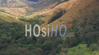 Paysage De Forêt Tropicale à La Forêt Nuageuse De Monteverde, Costa Rica. Prise De Vue Drone