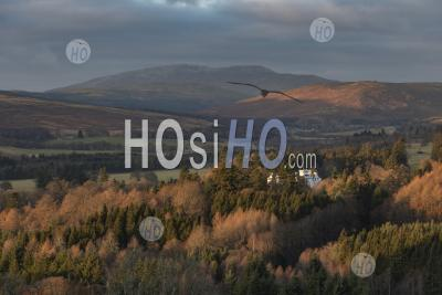 Blair Atholl Castle Surrounded In Autumn Trees, Perthshire, Highlands Of Scotland, United Kingdom, Europe