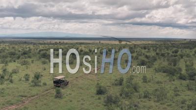 Safari Game Drive à Laikipia, Kenya. Vidéo Aérienne Par Drone De 4 Roues Motrices à Travers Le Paysage De Savane Africaine.