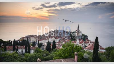 Photo Of Slovenia At Piran Old Town With Mediterranean Sea And Traditional Red Rooftops. Elevated Photo View Of Slovenian Coast Scenery At Sunset