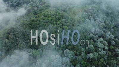 Aerial Fly Over Fog Sea View Of Forest At Penang Hill - Video Drone Footage