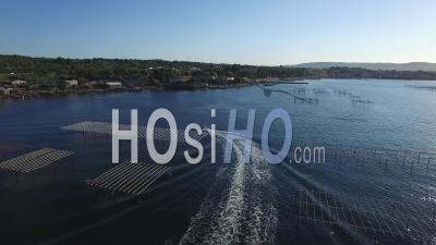Ferme Ostréicole Sur Etang De Thau - Vidéo Drone