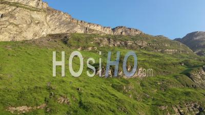 Rocks Of The Swiss Alps, Mountain Deer Run On The Rock - Video Drone Footage