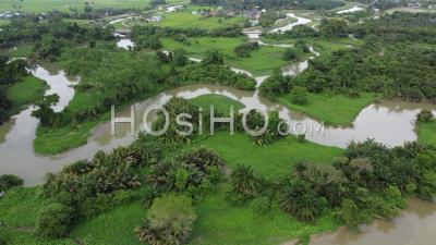 Aerial View River Sungai Perai Near Green Forest - Video Drone Footage