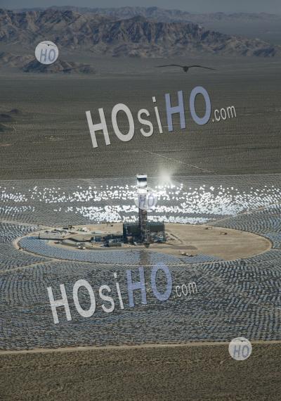 Ivanpah Solar Project
