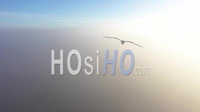 Vue Aérienne épique D'un Drone S'élevant Au-Dessus Des Nuages