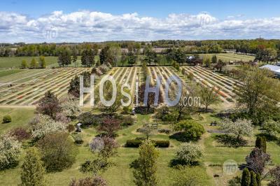 Veldheer Tulip Farm - Aerial Photography