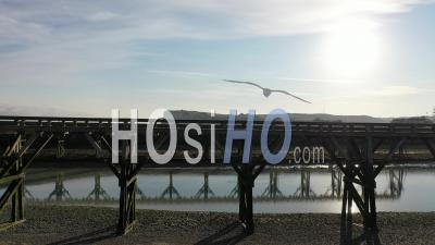 Cote D Albatre, Port, Dike - Town Of Treport - Video Drone Footage