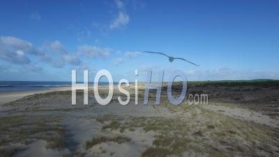 Plage De La Lagune Vidéo Drone, La Teste-De-Buch