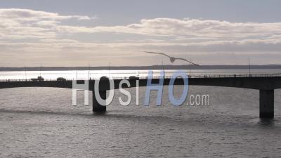 Circulation Routière Sur Le Pont, Oléron, Vidéo Drone